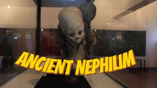 Ancient-Nephilim-and-the-secrets-of-the-museum-with-hidden-away-Giant-skeletons.