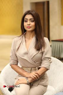 Actress Shriya Saran Stills in Stylish Dress at Gautamiputra Satakarni Team Press Meet  0128.JPG