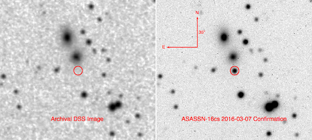 ASASSN-16cs Extragalactic Supernova Confirmation (Right) - Image by Issac Cruz.