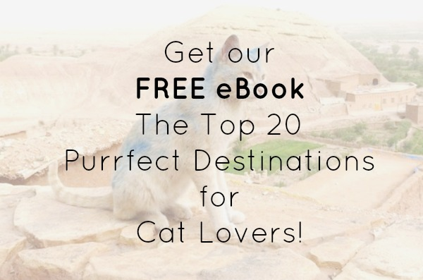 free ebook top 20 purrfect destinations for cat lovers