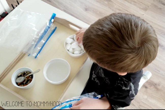 Our Montessori Spring: gardening activities for preschool by Welcome to Mommyhood, #scienceactivities, #montessori, #montessoriactivities