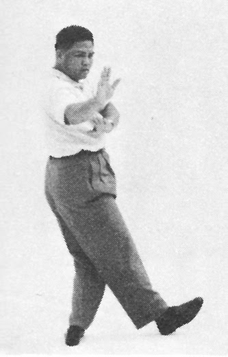 Tai Chi Chuan (Square Form) 110. Turn Body And Double Hand Sweep Lotus Leg