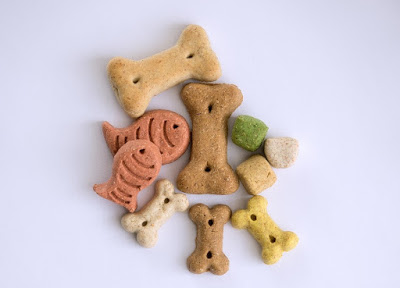 All You Need Is Dog Treats
