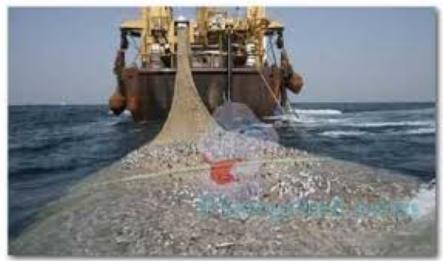 Alat Tangkap Pukat Ikan
