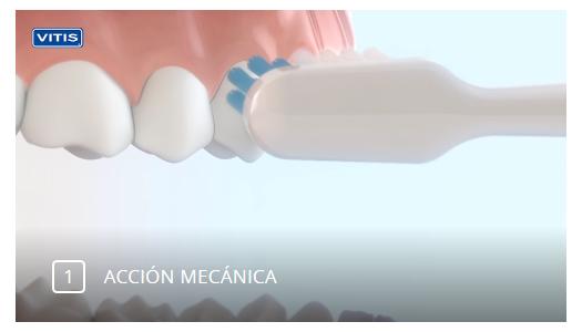 cepillo-de-dientes-electrico-tecnologia-sonica-Vitis