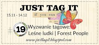 http://justtagit.blogspot.ie/2016/11/wyzwanie-tagowe-19-lesne-ludki-tag.html