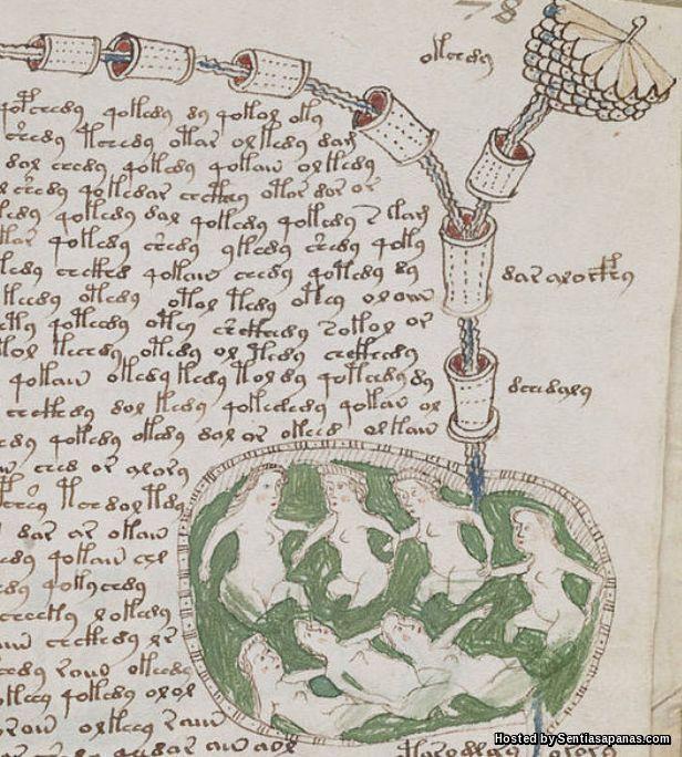 Manuskrip Voynich [5]