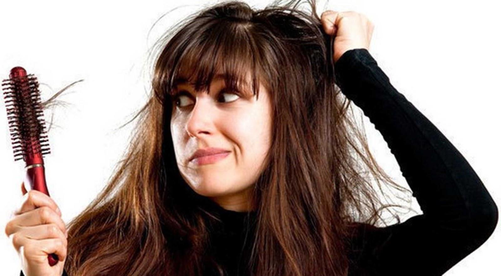 Cara Merawat Rambut Dengan Lidah Buaya Untuk Mengobati Rambut Rontok