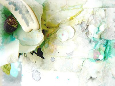 Closeup 4