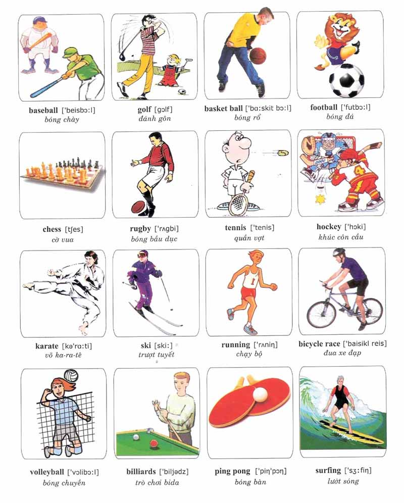vocabulary sports sport learning related vocabularies