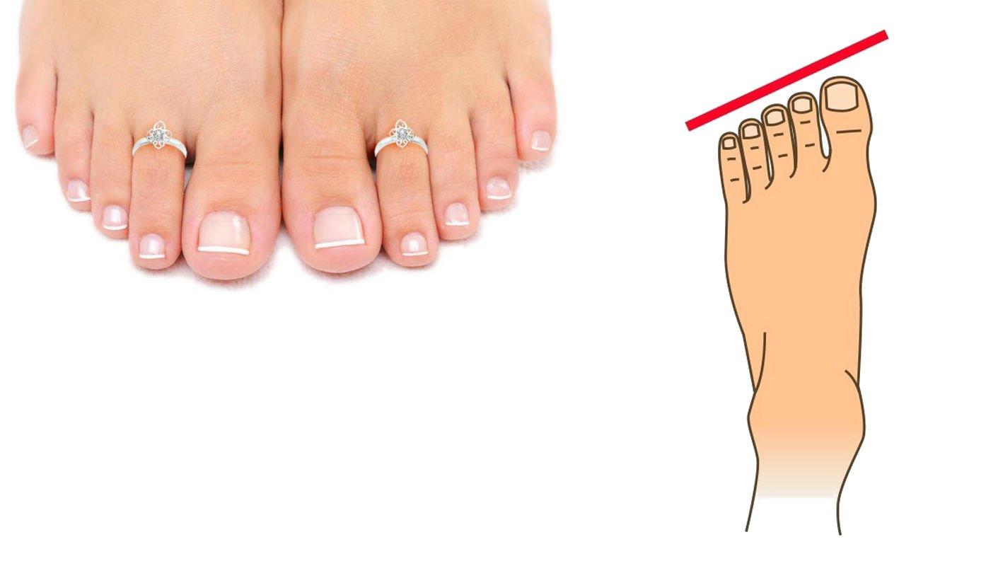 средняя длина пальцев ног оценил