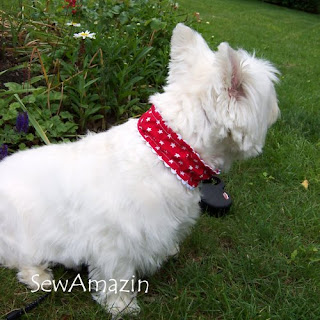 Patriotic Pup Dog Collar Slipcovers