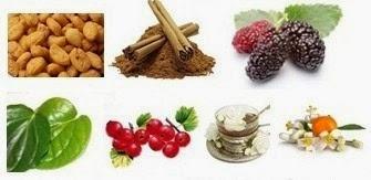 Ini Dia 10 Makanan Penghancur Kolesterol Jahat!