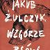 """Polski Twin Peaks. Recenzja """"Wzgórza psów"""" Jakuba Żulczyka"""