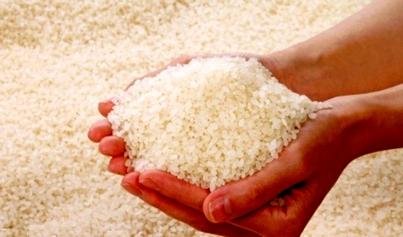 Zakat Fitrah di Banda Aceh 2,8 Kilogram Beras Per Jiwa