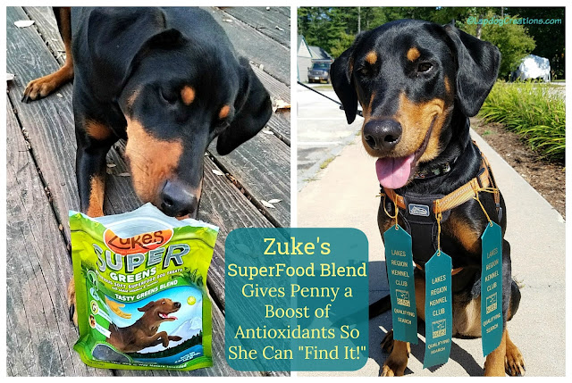 zukes dog treats nosework canine scent work