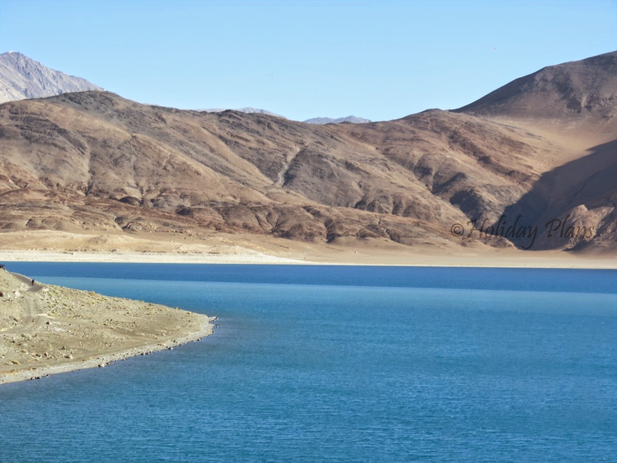 Blue Shades of Pangong