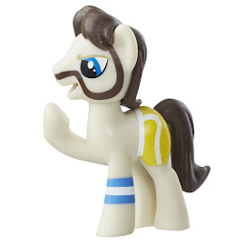 My Little Pony Wave 17B Ace Point Blind Bag Pony