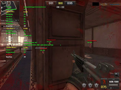 cit pointblank ina