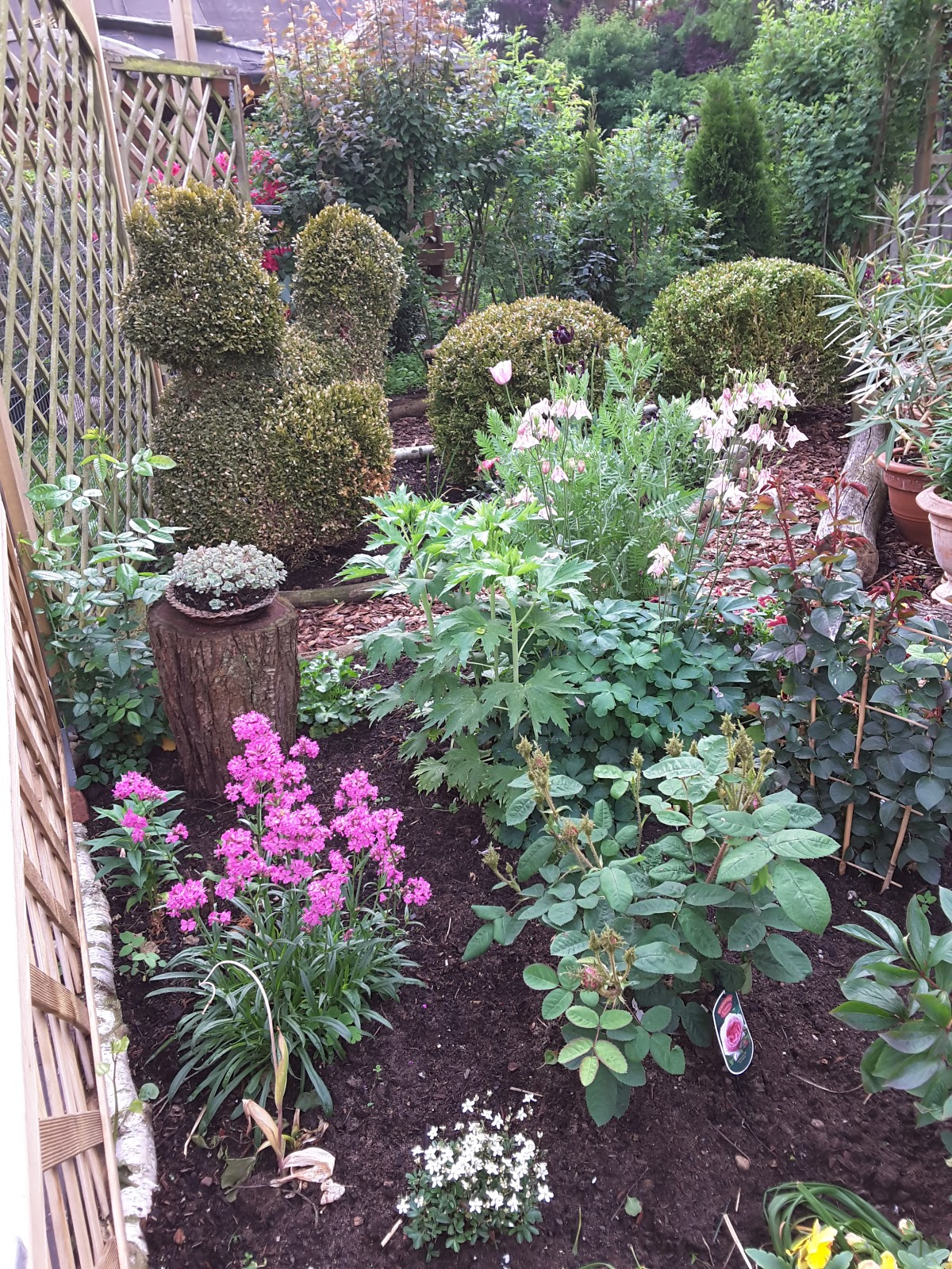 Schön Pflegeleichte Gärten Ideen