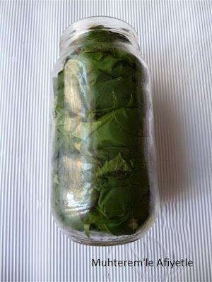 cam kavanozda pişirmeden asma yaprağı nasıl yapılır?