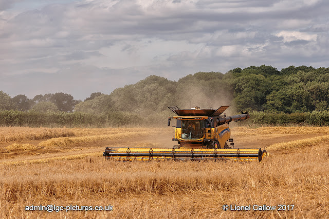 Combine harvester working hard