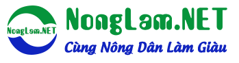NongLam.NET