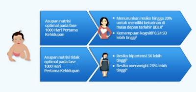 Pentingnya Pengetahuan Seribu Hari Pertama Kehidupan bagi Ibu dan Calon Ibu.