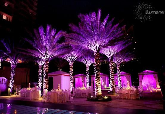 Platinum Touch Events Light It Up Wedding Reception