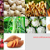 Ten Root Vegetables With Amazing Health Benefits