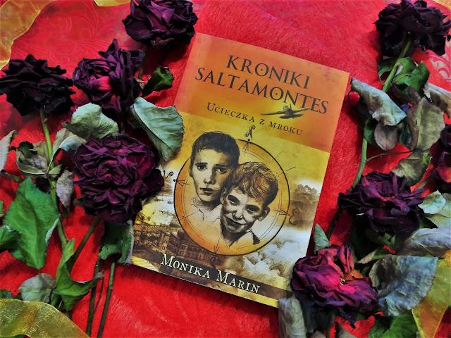 Kroniki Saltamontes- Monika Marin