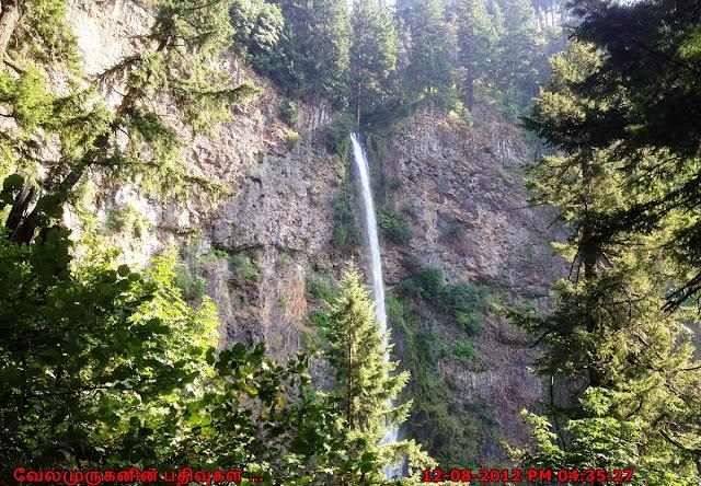 Waterfalls in West Coast