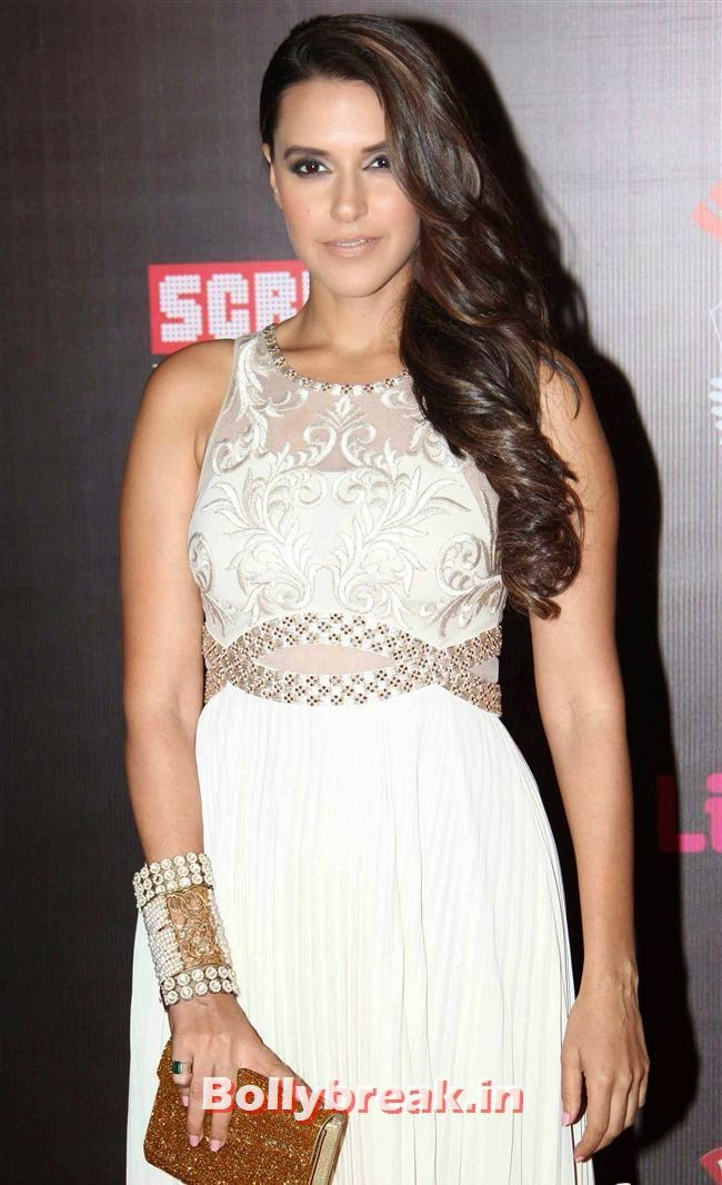 Neha Dhupia, A-List Bollywood Actresses at Screen Awards - Deepika, Sonakshi, Bipasha & Neha