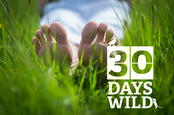 #30DaysWild. Charity urges us all to take part in 'random acts of wildness'