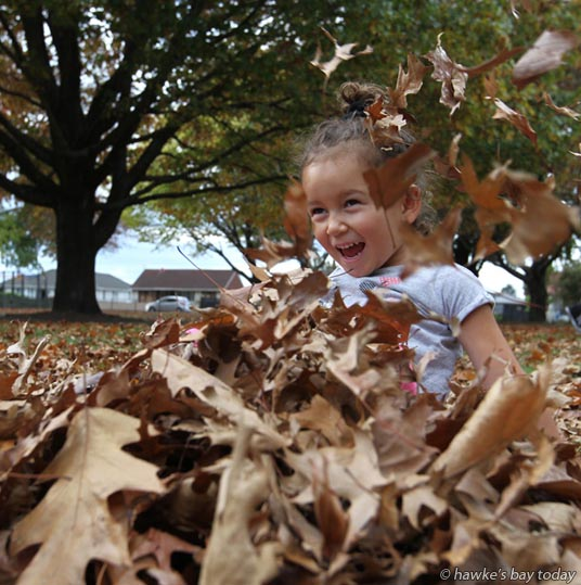 Lee Tamati, 4, Hastings, enjoys playing in the autumn leaves in the warm weather at the Lions' Community Park in Mayfair, Hastings. photograph