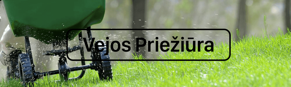 Vejos pjovimas, tręšimas, aeravimas ir piktžolių naikinimas
