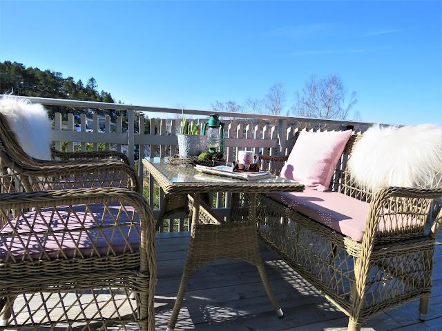 Vårblomster i krukker har ankommet hytta - Vårblomster ved kurvmøblene på hytta - mot utsikten
