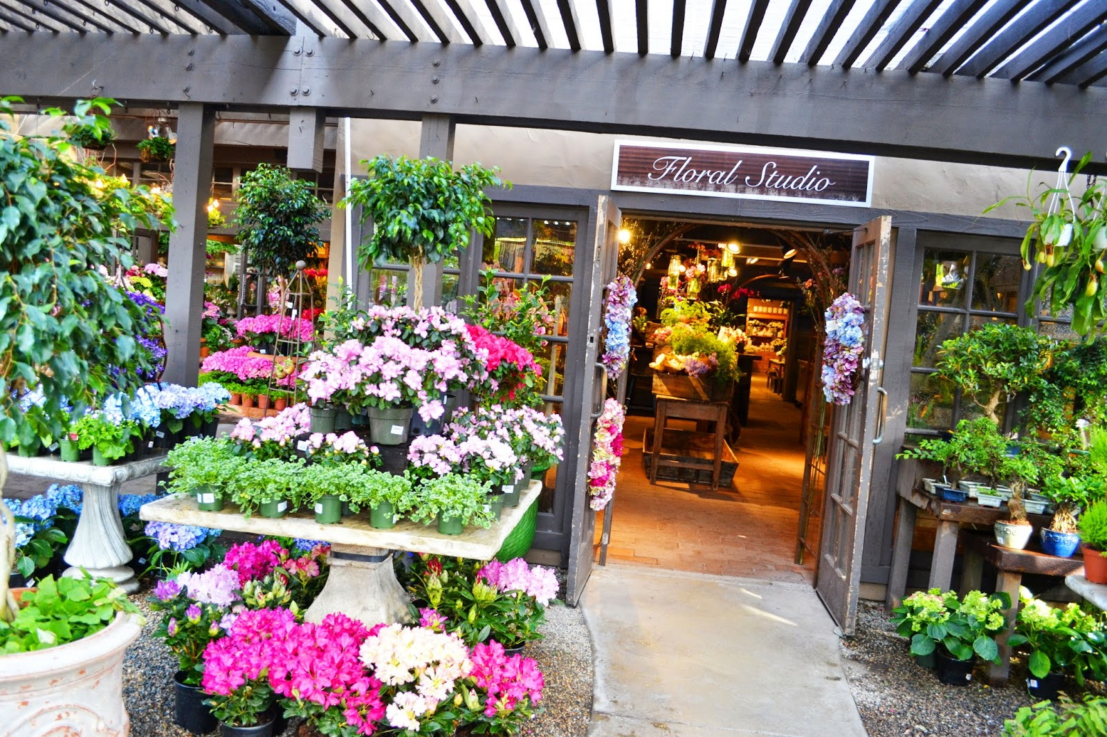 At Roger S Gardens In Newport Beach And Wanted To Take You With Me Share Their Beautiful Spring Display Of Flowers Located Fl Studio