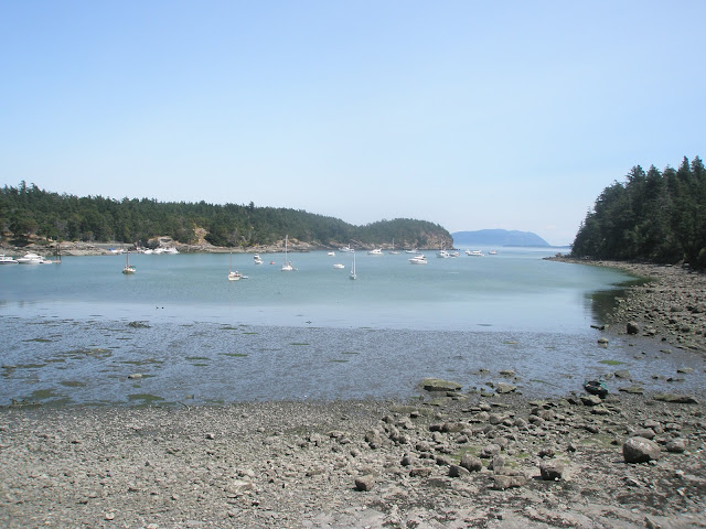 Fossil Bay on Sucia Island