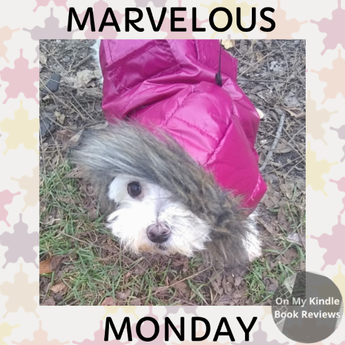 On My Kindle BR presents Marvelous Monday with Lexi: November 12th Edition!