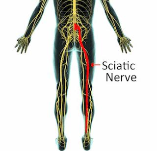 Ayurvedic treatment of Sciatica in nashik ayurvedanashik.com