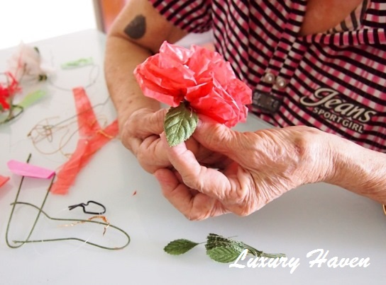 mothers day diy plastic carnation flowers