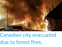 http://sciencythoughts.blogspot.co.uk/2016/05/canadian-city-evacuated-due-to-forest.html