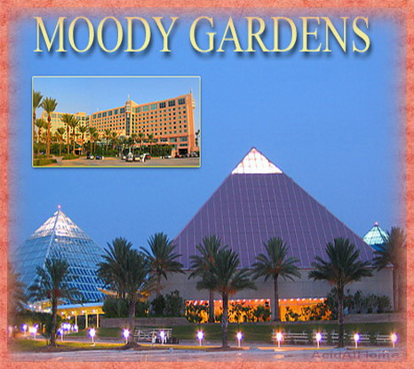 Hotels Near Moody Gardens