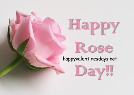 rose-day-photo