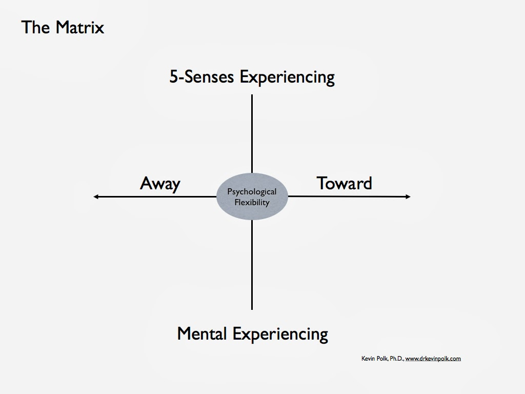 The ACT Matrix by Kevin Polk: 16 Steps