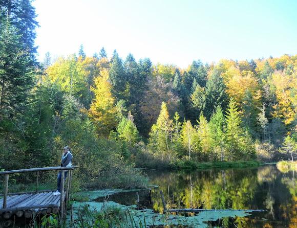 Національний природний парк «Сколівські Бескиди». Озеро Журавлине (Мертве )