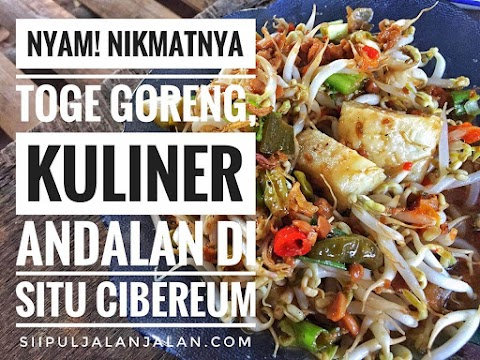 Nyam! Nikmatnya Toge Goreng, Kuliner Andalan di Situ Cibereum