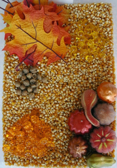Fall Sensory Bin for Preschool Theme