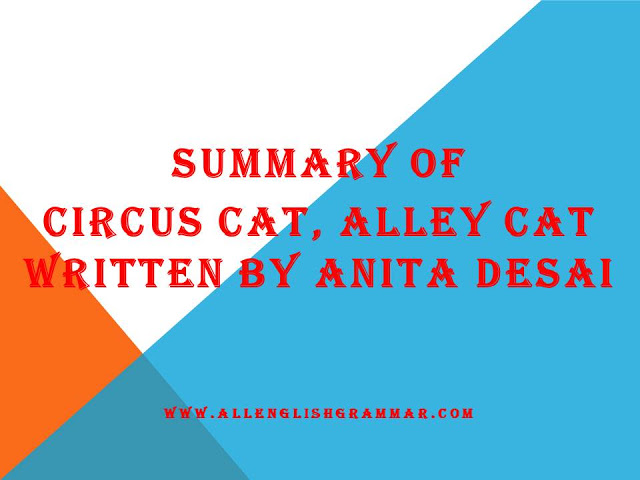 Summary-Of-Circus-Cat-Alley-Cat